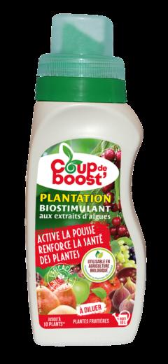 Produit plantation plantes fruitières